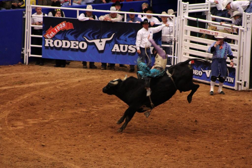 Bull riding!